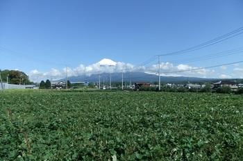 DSCF4501富士山初冠雪b.jpg